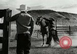 Image of Working activities on a farm and ranch in Texas United States USA, 1943, second 13 stock footage video 65675032776