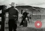 Image of Working activities on a farm and ranch in Texas United States USA, 1943, second 14 stock footage video 65675032776