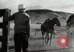Image of Working activities on a farm and ranch in Texas United States USA, 1943, second 16 stock footage video 65675032776