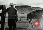 Image of Working activities on a farm and ranch in Texas United States USA, 1943, second 17 stock footage video 65675032776