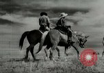 Image of Working activities on a farm and ranch in Texas United States USA, 1943, second 31 stock footage video 65675032776