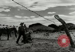 Image of Working activities on a farm and ranch in Texas United States USA, 1943, second 43 stock footage video 65675032776