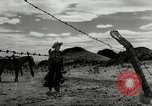 Image of Working activities on a farm and ranch in Texas United States USA, 1943, second 45 stock footage video 65675032776