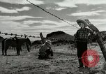 Image of Working activities on a farm and ranch in Texas United States USA, 1943, second 56 stock footage video 65675032776