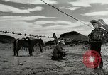 Image of Working activities on a farm and ranch in Texas United States USA, 1943, second 57 stock footage video 65675032776