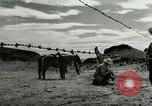 Image of Working activities on a farm and ranch in Texas United States USA, 1943, second 58 stock footage video 65675032776