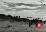 Image of Working activities on a farm and ranch in Texas United States USA, 1943, second 60 stock footage video 65675032776