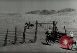 Image of Roundup of wild horses United States USA, 1943, second 48 stock footage video 65675032777