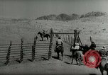 Image of Roundup of wild horses United States USA, 1943, second 49 stock footage video 65675032777
