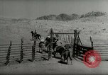 Image of Roundup of wild horses United States USA, 1943, second 51 stock footage video 65675032777