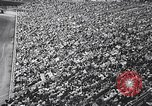 Image of rodeo Houston Texas USA, 1966, second 11 stock footage video 65675032846