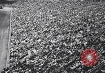 Image of rodeo Houston Texas USA, 1966, second 12 stock footage video 65675032846