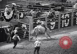 Image of rodeo Houston Texas USA, 1966, second 18 stock footage video 65675032846