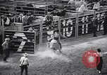 Image of rodeo Houston Texas USA, 1966, second 19 stock footage video 65675032846