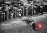 Image of rodeo Houston Texas USA, 1966, second 22 stock footage video 65675032846