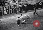Image of rodeo Houston Texas USA, 1966, second 23 stock footage video 65675032846