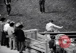 Image of rodeo Houston Texas USA, 1966, second 26 stock footage video 65675032846