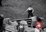 Image of rodeo Houston Texas USA, 1966, second 29 stock footage video 65675032846