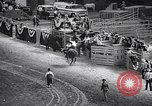Image of rodeo Houston Texas USA, 1966, second 34 stock footage video 65675032846