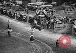 Image of rodeo Houston Texas USA, 1966, second 35 stock footage video 65675032846