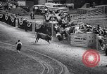 Image of rodeo Houston Texas USA, 1966, second 39 stock footage video 65675032846
