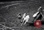Image of rodeo Houston Texas USA, 1966, second 56 stock footage video 65675032846