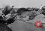 Image of turkey Westley California USA, 1933, second 13 stock footage video 65675032944