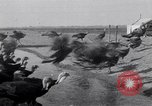 Image of turkey Westley California USA, 1933, second 18 stock footage video 65675032944