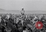 Image of turkey Westley California USA, 1933, second 24 stock footage video 65675032944