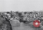 Image of turkey Westley California USA, 1933, second 49 stock footage video 65675032944