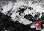 Image of burning books during the Hungarian Revolution Hungary, 1956, second 2 stock footage video 65675033230