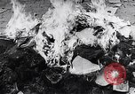Image of burning books during the Hungarian Revolution Hungary, 1956, second 4 stock footage video 65675033230