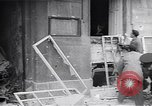 Image of burning books during the Hungarian Revolution Hungary, 1956, second 13 stock footage video 65675033230