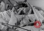 Image of Hungarian Revolution Hungary, 1956, second 18 stock footage video 65675033235