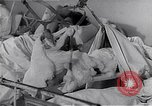 Image of Hungarian Revolution Hungary, 1956, second 19 stock footage video 65675033235