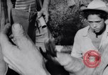Image of Che Guevara Cuba, 1958, second 46 stock footage video 65675033307