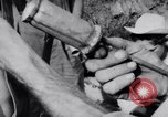 Image of Che Guevara Cuba, 1958, second 47 stock footage video 65675033307