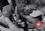 Image of Che Guevara Cuba, 1958, second 48 stock footage video 65675033307