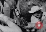 Image of Che Guevara Cuba, 1958, second 49 stock footage video 65675033307