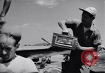 Image of 18th Fighter Bomber Wing Korea, 1951, second 34 stock footage video 65675033382