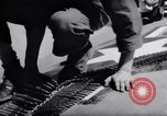 Image of Loading of F-51 guns Korea, 1951, second 12 stock footage video 65675033388