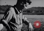 Image of Ground crew members of 18th Fighter Bomber Wing Korea, 1951, second 34 stock footage video 65675033391