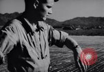 Image of Ground crew members of 18th Fighter Bomber Wing Korea, 1951, second 36 stock footage video 65675033391