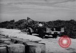 Image of Napalm bombs Korea, 1951, second 4 stock footage video 65675033392