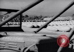 Image of Napalm bombs Korea, 1951, second 51 stock footage video 65675033392
