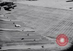 Image of 18th Fighter Bomber Wing Korea, 1951, second 50 stock footage video 65675033397