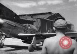 Image of F-51 aircraft of US 18th Fighter Bomber Wing Korea, 1951, second 59 stock footage video 65675033404