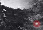 Image of 1st Cavalry Division New Guinea, 1944, second 1 stock footage video 65675033417