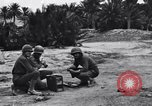 Image of Pigeon messengers Tunisia North Africa, 1943, second 3 stock footage video 65675033484