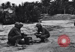 Image of Pigeon messengers Tunisia North Africa, 1943, second 4 stock footage video 65675033484